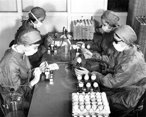From Salk To Sabin: Persistent Polio and Vaccine