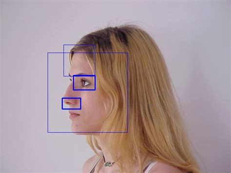 c++ - Feature detection in profile face images - Stack