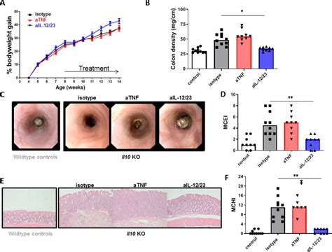 Anti-TNF therapy in IBD exerts its therapeutic effect